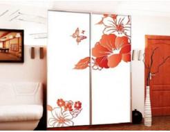 Двери для шкафа купе стекло с фотопечатью 2250х1350