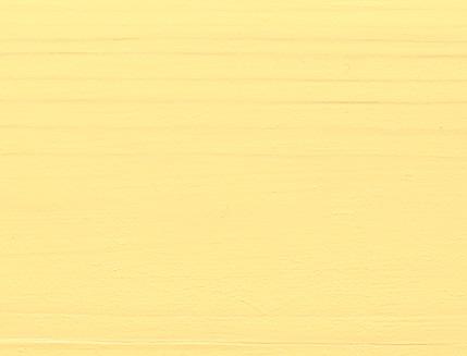 Акриловая лазурь AQUA COLOR – UV protect Bionic House (медовая) - изображение 2 - интернет-магазин tricolor.com.ua