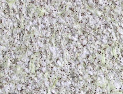 Жидкие обои Bioplast № 8643 бело-зеленые