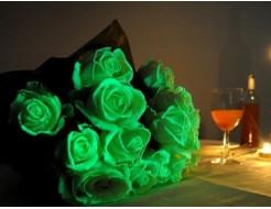 Краска светящаяся AcmeLight для цветов классик 20мл - интернет-магазин tricolor.com.ua