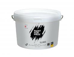 Штукатурка интерьерная магнитная Paintforpros Plaster - интернет-магазин tricolor.com.ua
