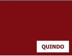 Пигмент органический фиолетовый светопрочный Tricolor Quindo - интернет-магазин tricolor.com.ua