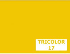 Пигмент органический желтый светопрочный Tricolor 17 - интернет-магазин tricolor.com.ua