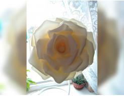 Изолон цветной Izolon Pro 3002 белый (шампань) 1м - интернет-магазин tricolor.com.ua