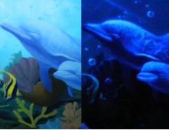 Краска люминесцентная AcmeLight для интерьера белая - интернет-магазин tricolor.com.ua
