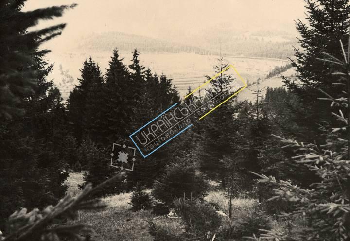 http://uamoment.com/gallery/Carpathians-340 photo