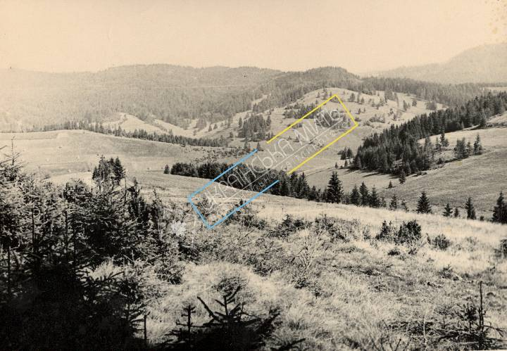 http://uamoment.com/gallery/Carpathians-343 photo
