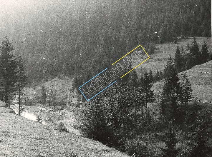 http://uamoment.com/gallery/Carpathians-358 photo