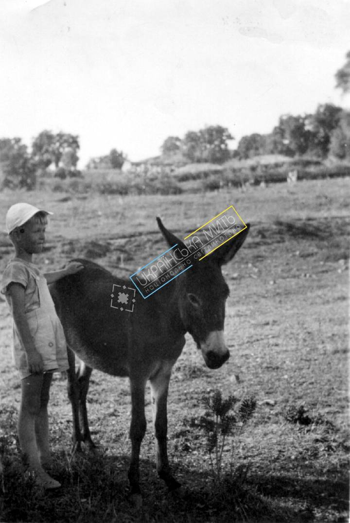 http://uamoment.com/gallery/Boy-with-donkey-838 photo