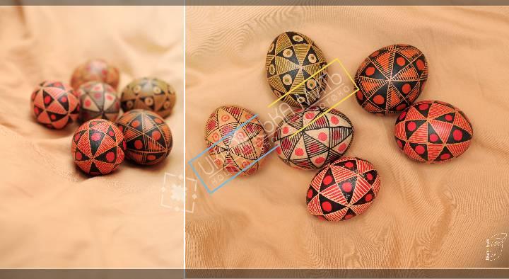 uamoment-gallery-Eggs-1100 photo