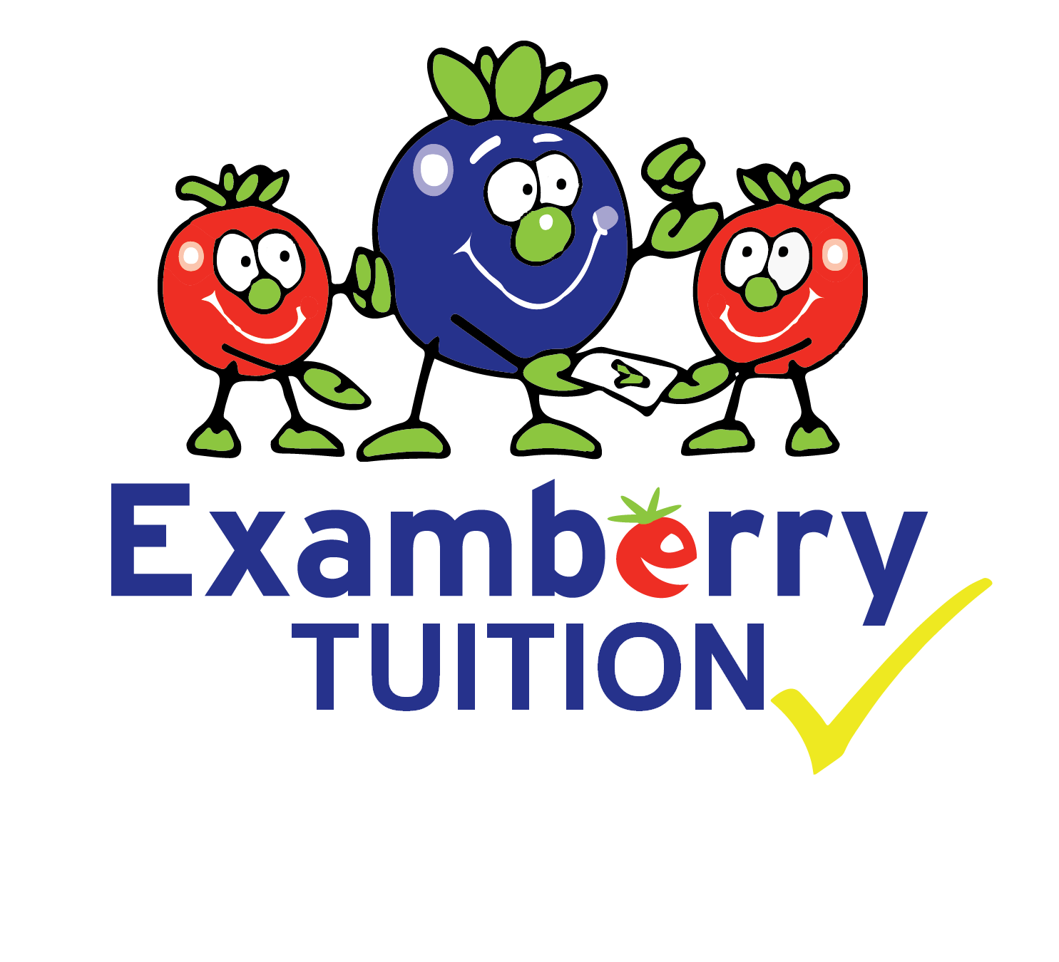Examberry Tuition Ltd
