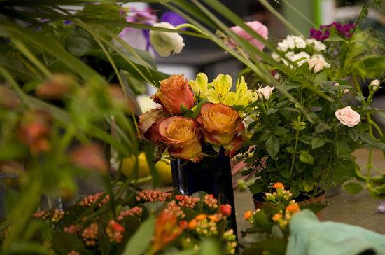 Blumen Maarsen AG