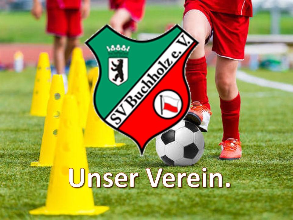 SV Buchholz 1911   Fußballjugend und Mannschaften