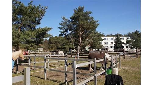Pferde- und Freizeitparadies