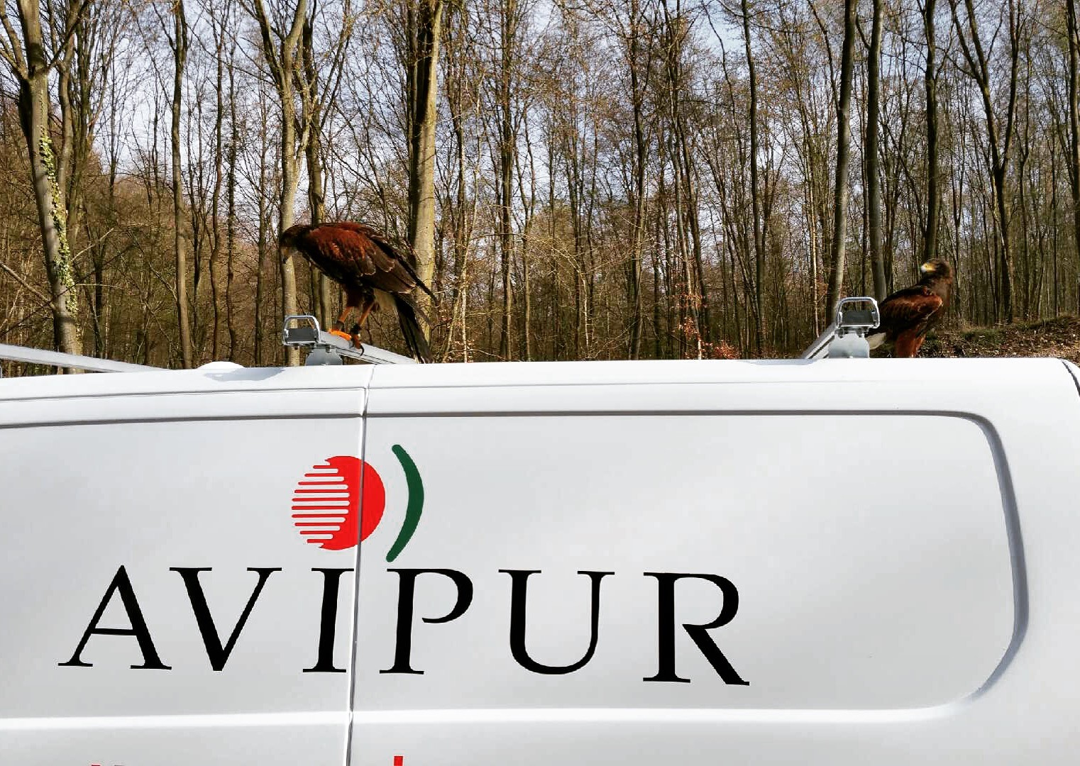 AVIPUR Nord-Ouest
