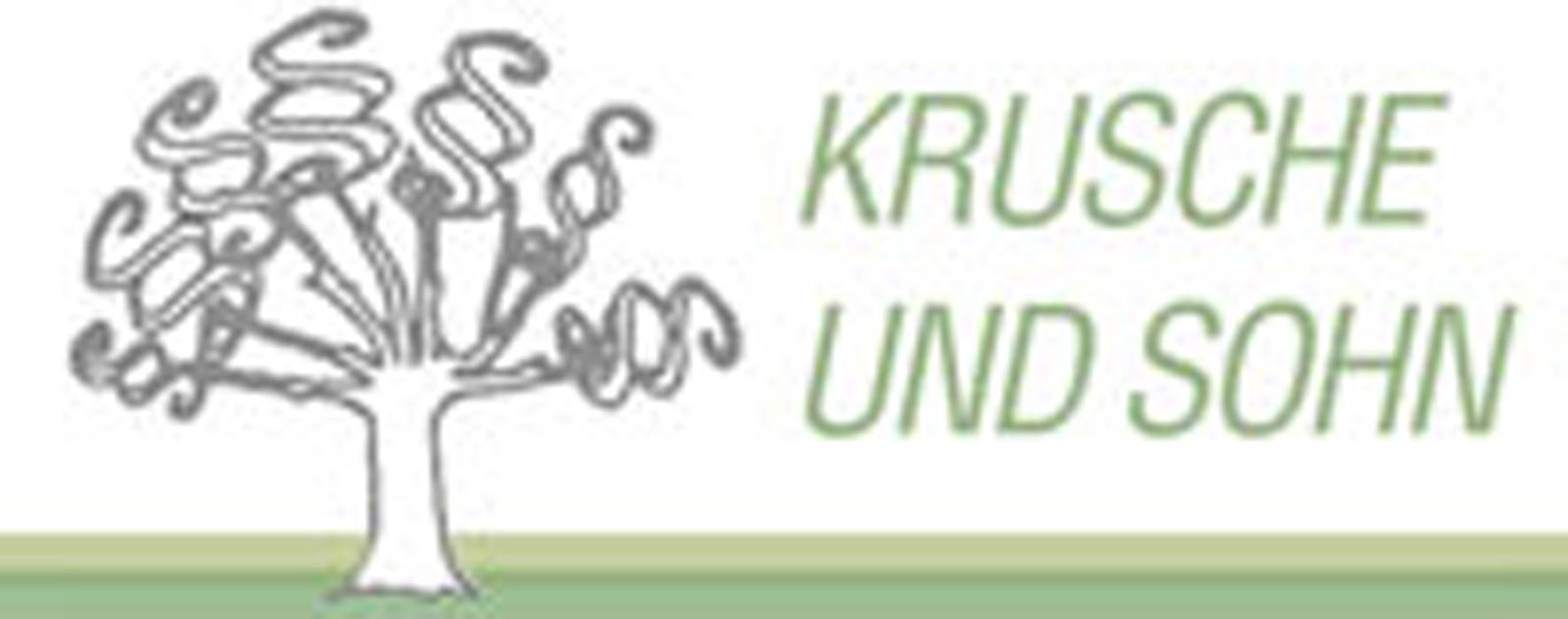 Bild zu Sozietät Krusche und Sohn - Wirtschaftsprüfer und Steuerberater in Ulm an der Donau