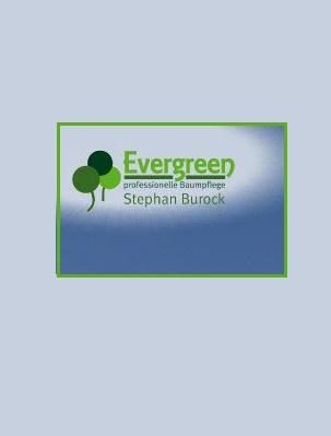 Evergreen - professionelle Baumpflege Stephan Burock