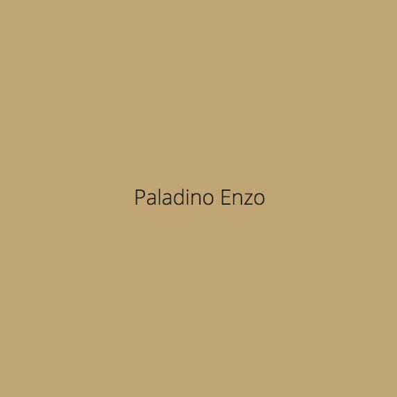Paladino Vincenzo