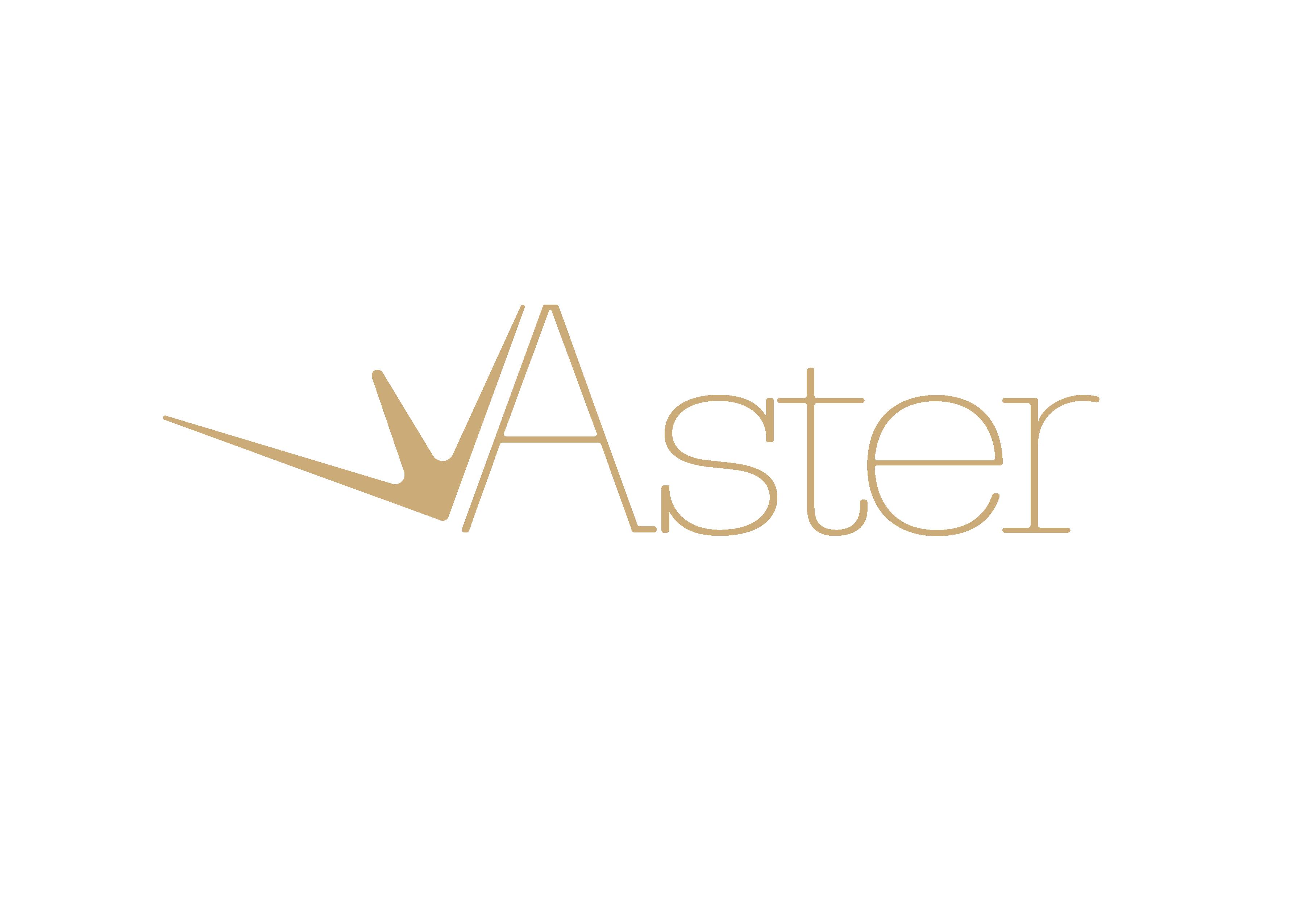 ASTER ASESORIA Y CONSULTORIA S.L.
