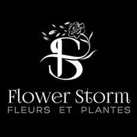 Flower Storm - Laura, SA 5480 - 0403 220 199   ShowMeLocal.com