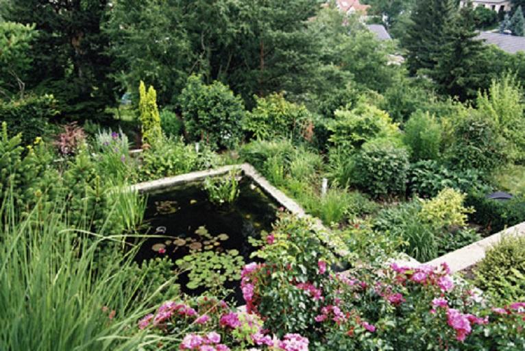 Garten Und Landschaftsbau In Erfurt