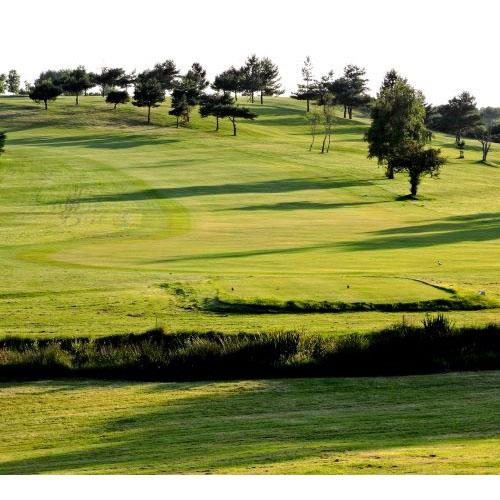 Wareham Golf Club