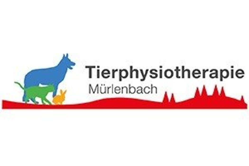 Bild zu Tierphysiotherapie Mürlenbach - Mobile Praxis in Mürlenbach