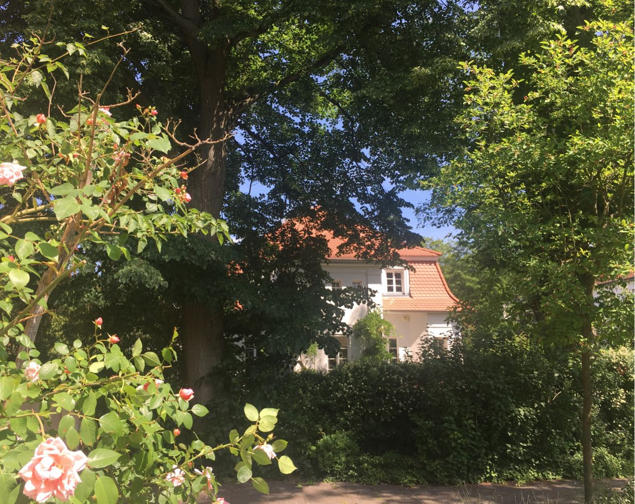 Carla Pflug Immobilien & Denkmalimmobilien