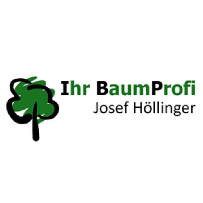 Bild zu Ihr Baumprofi Josef Höllinger Baumfällung Baum fällen in Fraunberg