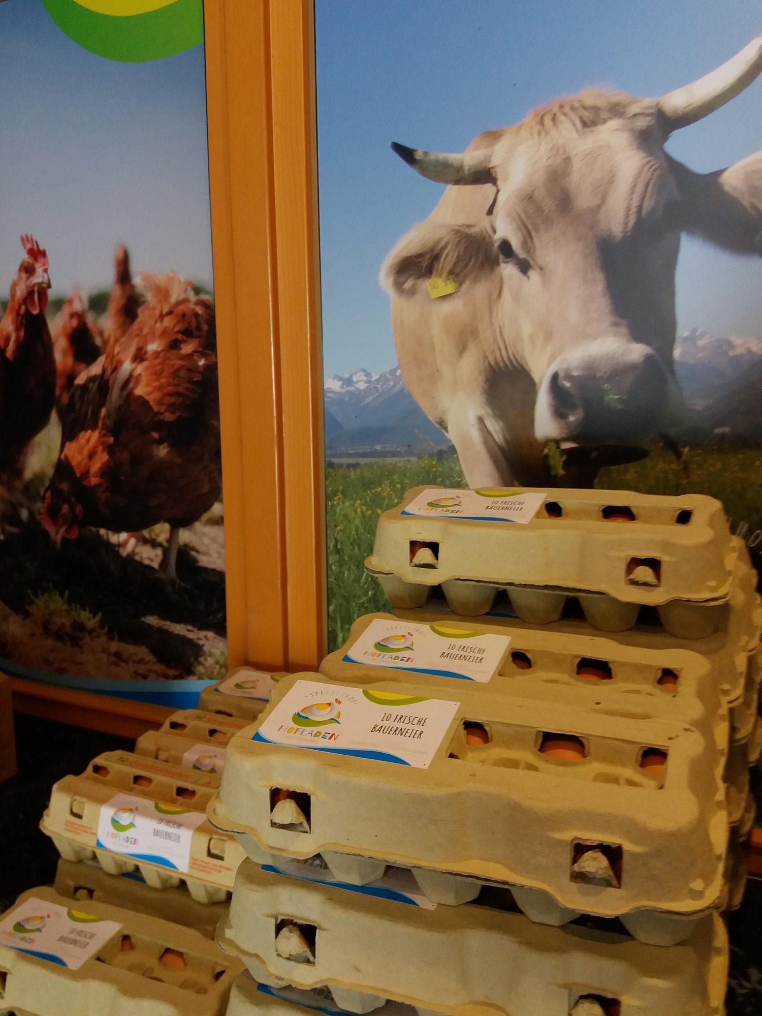 Seebach Hofladen Kitzbühel - Eier Käse Fleisch Gemüse Lebensmittel Kirchberg