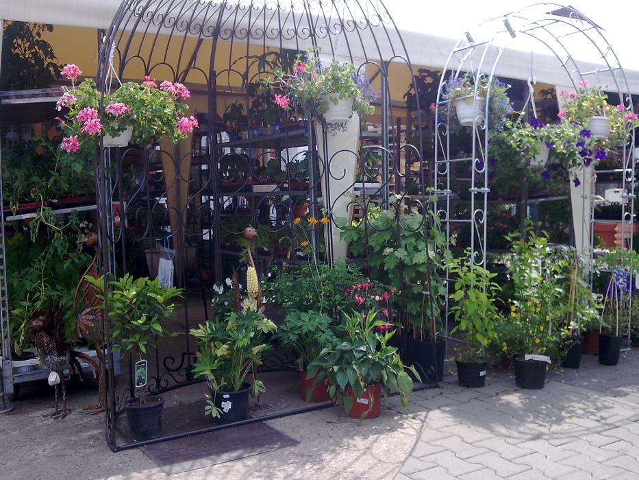 Bild der Kiebitzmarkt Hublitz