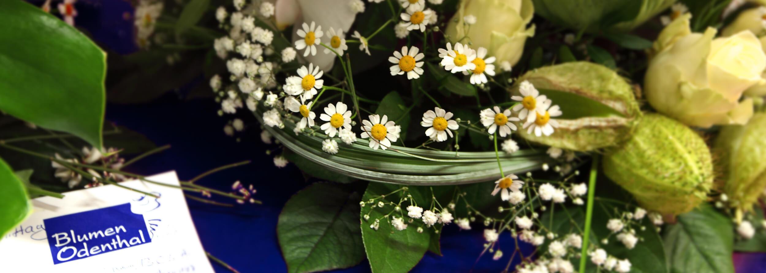 Blumen Odenthal GbR