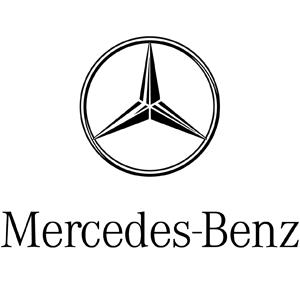 C. Wiesner GmbH & Co. KG Logo