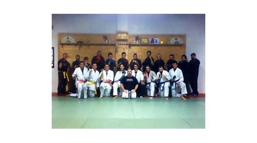 UMAC Karate/Jujutsu / MMA