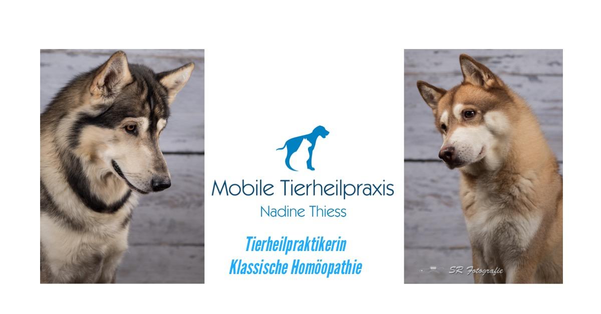 Mobile Naturheilpraxis für Tiere - Klassische Homöopathie - Nadine Thiess