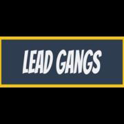 Lead Gangs Ltd - Bristol, Gloucestershire BS16 6SR - 07855 303463 | ShowMeLocal.com