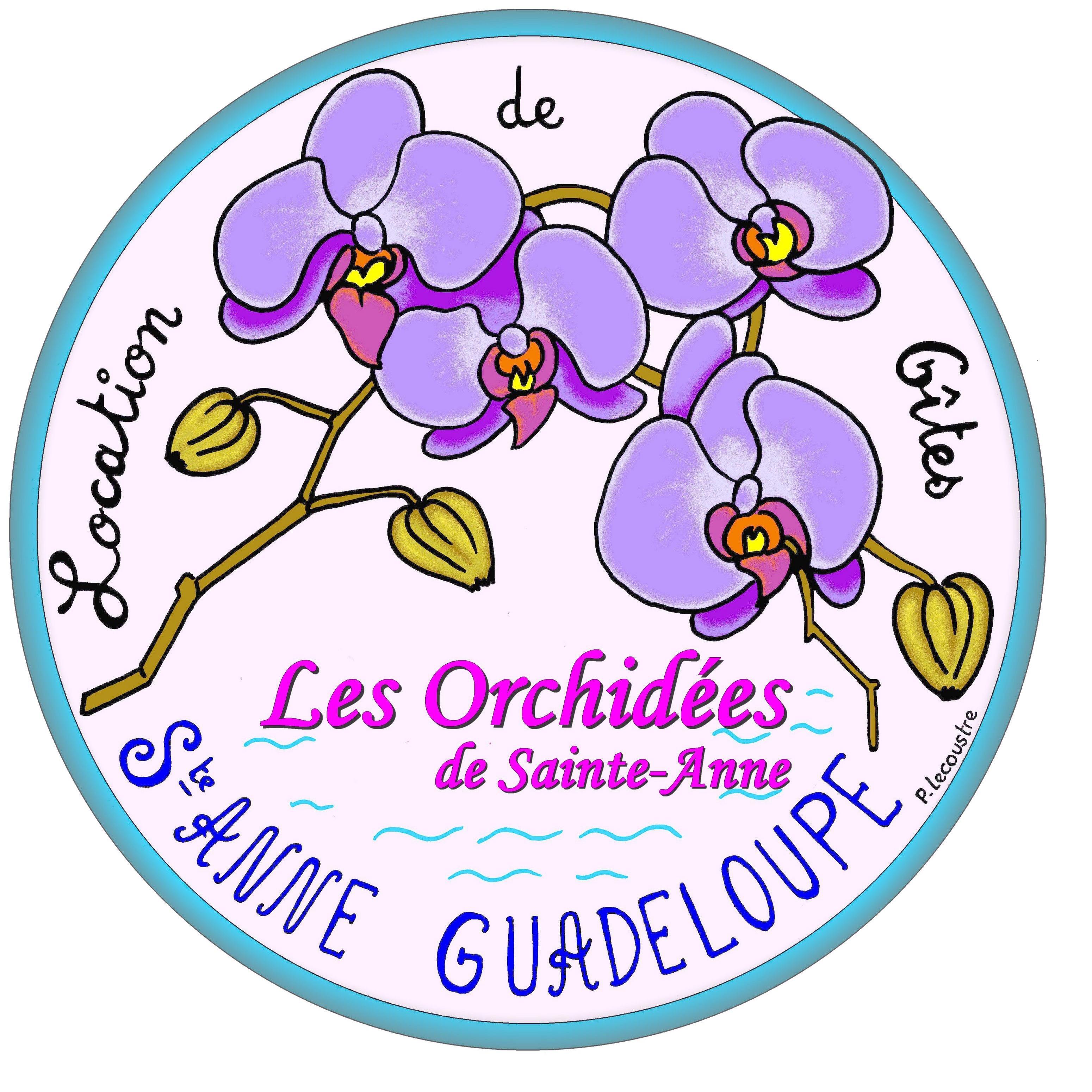 Les Orchidées de Sainte Anne
