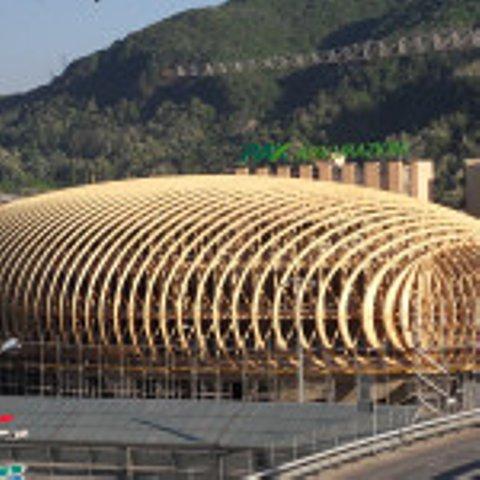 Holzbau AG Neue Lungern