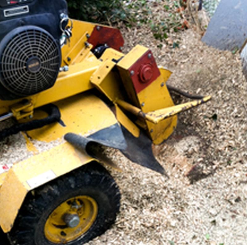 Goos Baumpflege und Gartengestaltung