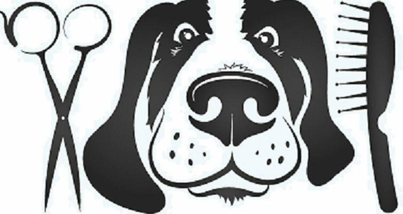 Bild zu Schnipp schnapp Fell ab Hunde Salon in Düsseldorf