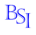 BSI Management Search & Consulting, LLC