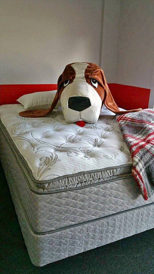 Mattress by Appointment - Nashville, NC 27856 - (252)220-2330 | ShowMeLocal.com