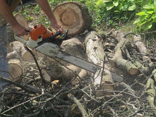 Doug's Tree Service - Abingdon, MD 21009 - (443)721-3338 | ShowMeLocal.com