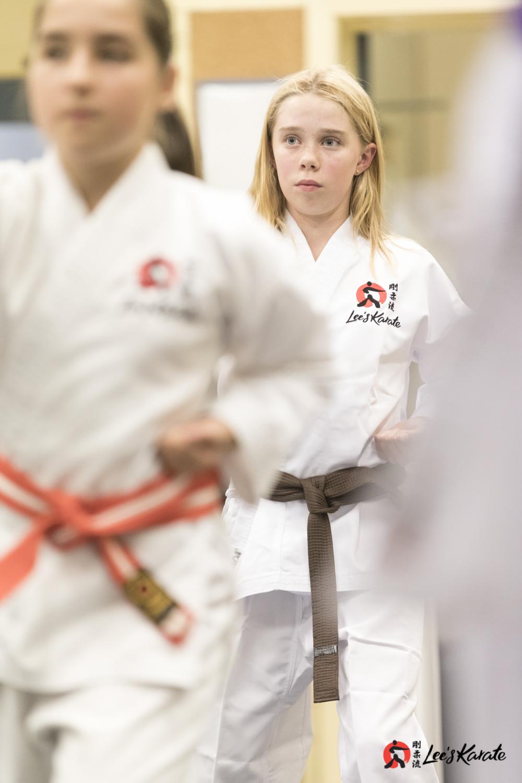 Lee's Karate