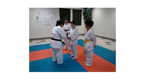 Treasure Valley School of Karate