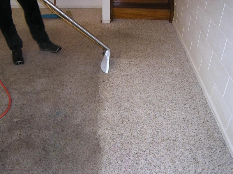 Sparkle Cleaning Power Ltd - Leicester, Leicestershire LE3 6SA - 01162 878049 | ShowMeLocal.com