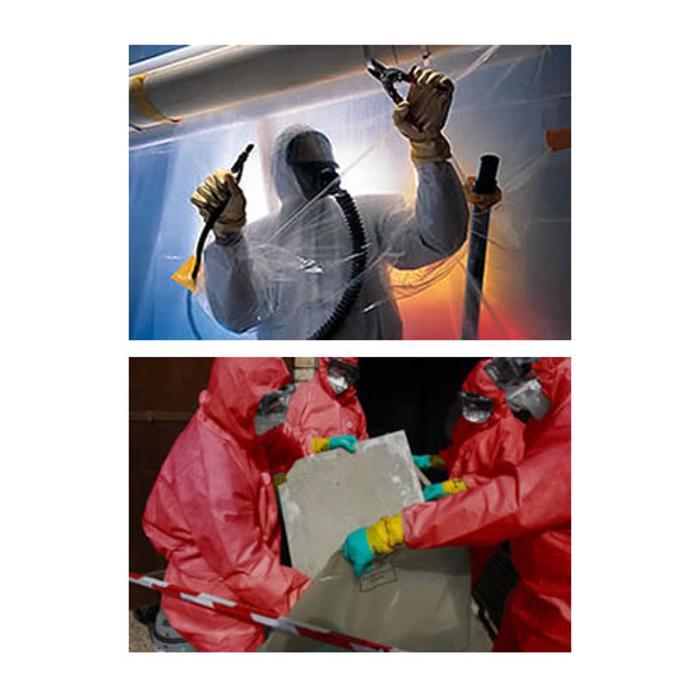 Southern Asbestos Solutions Ltd