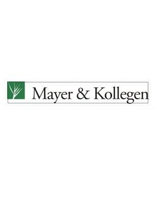 Mayer & Kollegen Steuerberatungsgesellschaft KG Stuttgart