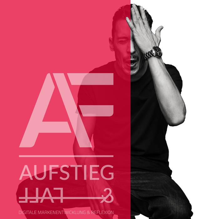 Bild zu Aufstieg & Fall Digitale Markenentwicklung & Reflexion in Offenbach am Main