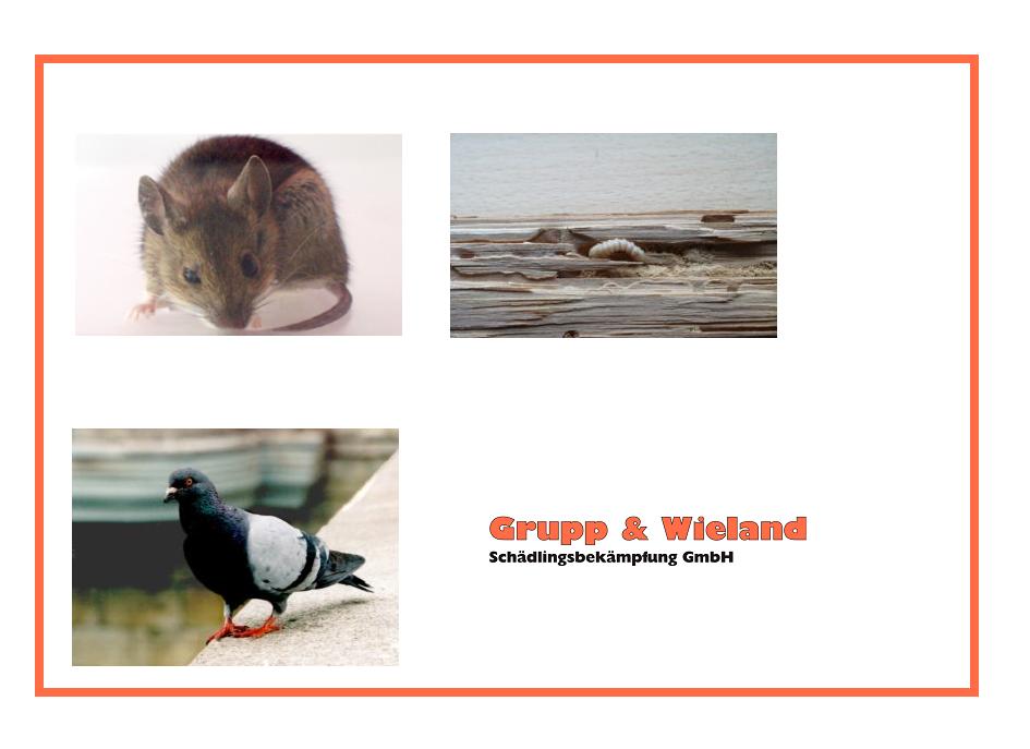 Grupp & Wieland Schädlingsbekämpfung GmbH